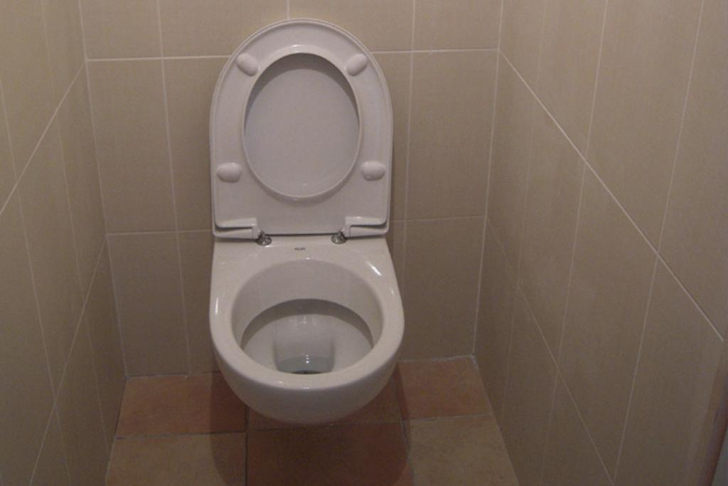 Agencement d'une douche et d'un wc suspendu (cliquez pour + de photos)